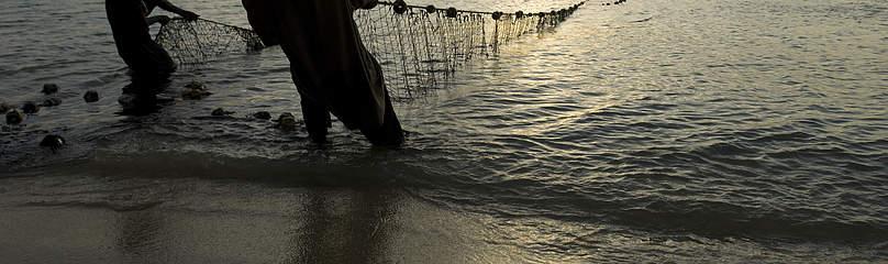 / ©: naturepl.com / Inaki Relanzon / WWF