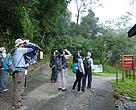A group of oversea team search for woodland birds by listening and observation in Tai Po Kau Nature Reserve