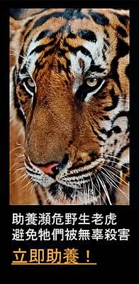 / ©: WWF- Hong Kong