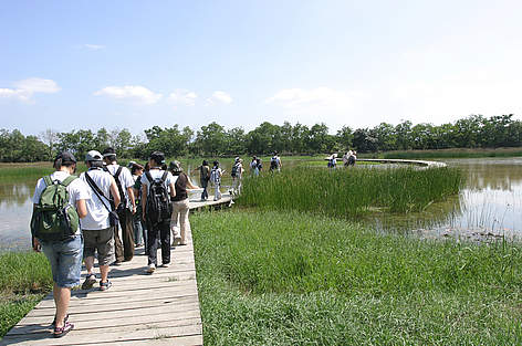 Mai Po Nature Reserve Centre - Public Visit on the boardwalk  / ©: Chris Cheung