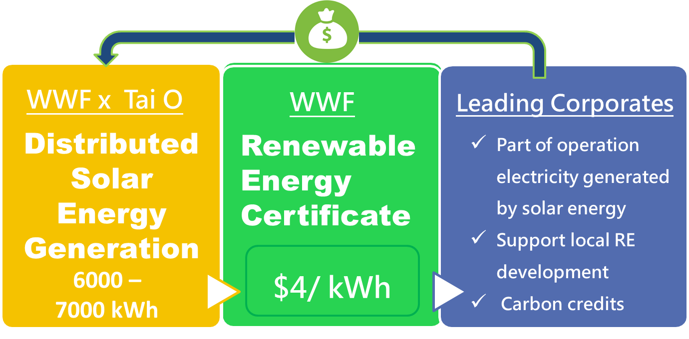 Launching hong kongs first renewable energy certificate wwf the total number of certificates issued will depend on the total amount of solar energy generated by the systems in tai o at the moment xflitez Gallery