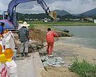 世界自然基金會香港分會(WWF)日前發現受高鐡工程影響,担竿洲的魚塘塘壆已出現沉降導致一段塘壆消失。 港鐡現只能以注石屎入塘壆及放置沙包暫緩塘水溢出。