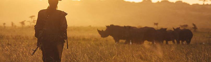 / ©: Jonathan Caramanus / Green Renaissance / WWF-UK