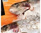 """Seafood Supply Chain Risk in Hong Kong Supermarkets"""